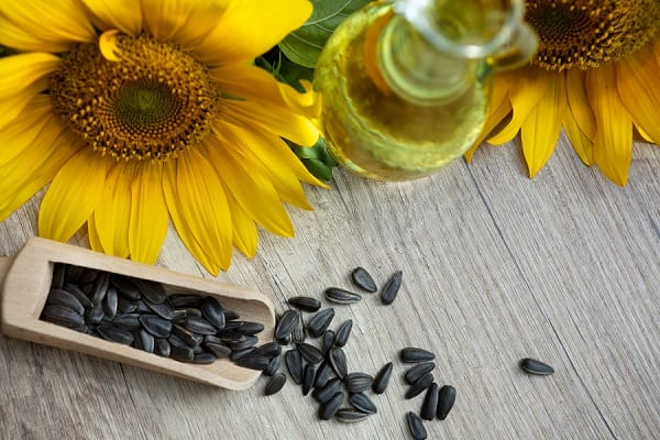 Sunflower oil and sunflower seeds shot from above