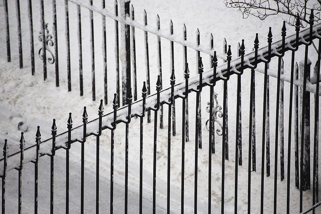wrought iron fence covered in snow