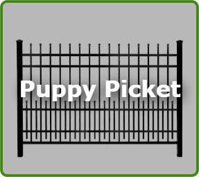 Puppy Picket