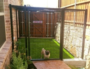 Dog Kennel with Black Steeled and Welded Wire