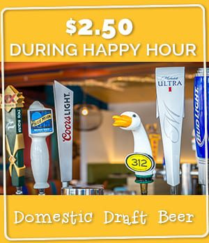 Domestic Draft Beer